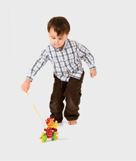 Jucarie de impins, Orange Tree Toys, maimutica, din lemn